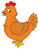 Hen (vector clip-art) Royalty Free Stock Images