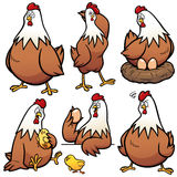 Hen Royalty Free Stock Images