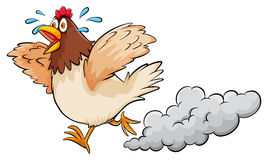 A hen Stock Image