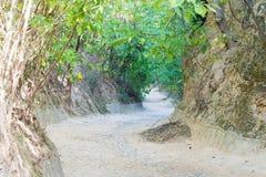 HENAN KINA - Augusti 20 2015: Forntida väg på det Hangu passerandet scenisk Ar Arkivfoton