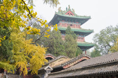HENAN KINA - November 09 2015: Shaolin tempel (världsarv) Fotografering för Bildbyråer