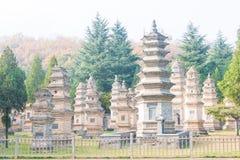 HENAN KINA - November 09 2015: Talin (buddistisk pagodskog) i Sha Arkivbild