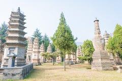 HENAN KINA - November 09 2015: Talin (buddistisk pagodskog) i Sha Fotografering för Bildbyråer