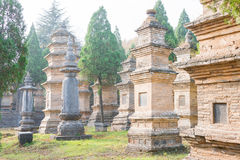 HENAN KINA - November 09 2015: Talin (buddistisk pagodskog) i Sha Arkivfoton