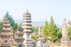 HENAN KINA - November 09 2015: Talin (buddistisk pagodskog) i Sha Royaltyfri Foto