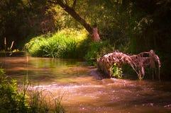 Henares-Fluss, Guadalajara Lizenzfreies Stockfoto