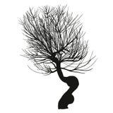 Hend drunknar den realistiska konturn av trädet Royaltyfria Foton
