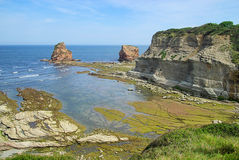 Hendaye rock Stock Images