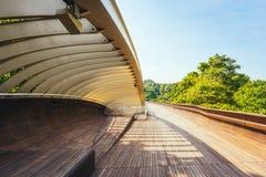 Henderson развевает мост, Сингапур стоковое изображение rf