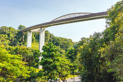 Henderson развевает мост, Сингапур стоковое фото rf