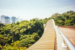 Henderson развевает мост, Сингапур стоковые изображения rf