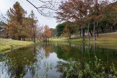 Henderson Creek, Ingram Texas Fotografía de archivo libre de regalías
