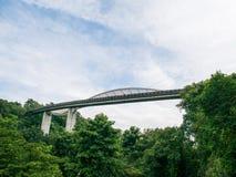 Henderson fala Bridżowy Singapur z Pofalowaną Wyginającą się stalą obrazy stock