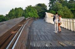 Henderson fala Bridżowy Singapur Fotografia Stock