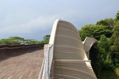 Henderson fala most na góry Faber tropikalnym lesie deszczowym Zdjęcie Royalty Free