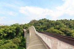 Henderson fala most na góry Faber tropikalnym lesie deszczowym Fotografia Stock