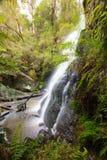 Henderson Falls Cape Otway fotografía de archivo libre de regalías