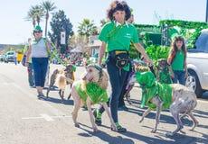 Henderson Saint Patrick-parade Stock Fotografie