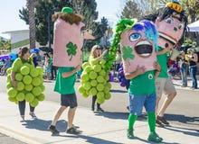 Henderson Saint Patrick-parade Stock Afbeeldingen