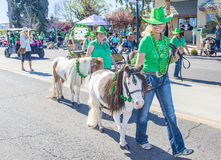Henderson Saint Patrick-parade Royalty-vrije Stock Afbeeldingen