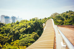 Henderson Waves Bridge, Singapur Lizenzfreie Stockbilder