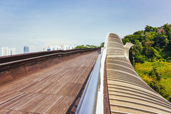 Henderson Waves Bridge, Singapur Stockfotografie