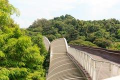Henderson Waves bro på den monteringsFaber rainforesten Royaltyfri Foto