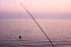 Hengel op de achtergrond van het meer in de ochtend stock afbeelding