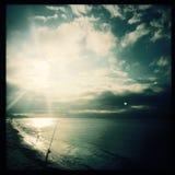 Hengel op strand in Destin, Florida stock afbeeldingen