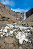 The Hengifoss waterfall in Iceland Royalty Free Stock Photo