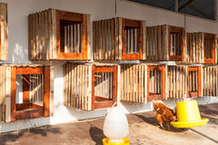 Henhouse farmyard, hanged on wall for chicken hatch Stock Images