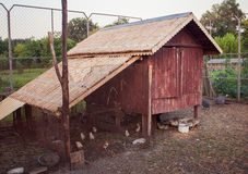 Henhouse in the village Royalty Free Stock Photo