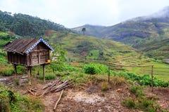Henhouse w górach Afryka na mglistym dżdżystym ranku Zdjęcia Royalty Free