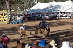 Henley on Todd Regatta. The Henley on Todd Regatta, is a boat race in the dry sand bed of the Todd River Northern Territory Australia. 2013 will be the 52nd Stock Photo