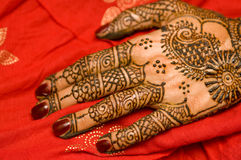Henna. Just applied on bride's hand Stock Images