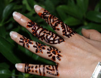 Henna applying on hand royalty free stock photos