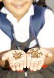 Henna nas mãos do bebé Foto de Stock Royalty Free