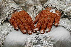 Hennastrauchhände stockbild