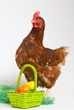 Henne mit Eiern Stockfoto