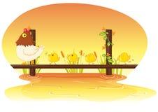Henne mit Huhn stock abbildung