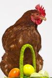 Henne mit Ostereiern Stockbilder
