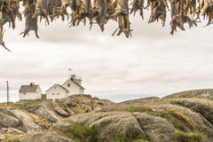 Henningsvaer-Leuchtturm Lofoten Norwegen stockbilder