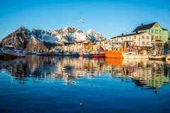 Henningsvaer at sunset. View to Henningsvaer port at sunsetLofoten, Norway royalty free stock photos