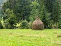 Heno apilado en una pila aseada en tierra privada Fotos de archivo