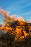 Heno del fuego Fotografía de archivo libre de regalías