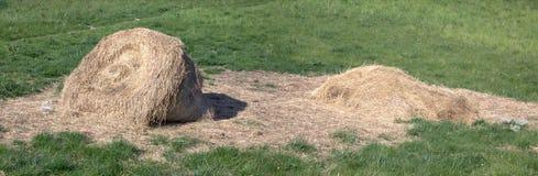 Heno en el prado Imagen de archivo