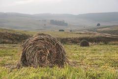 Heno en las pilas en el campo Paisaje caucásico Foto de archivo libre de regalías