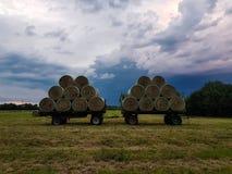 Heno que cosecha en verano foto de archivo
