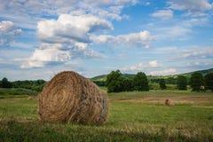 Heno recientemente rodado en un día de verano hermoso en granja rural imagenes de archivo