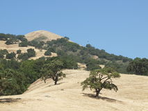 Henry Coe State Park Royalty Free Stock Image